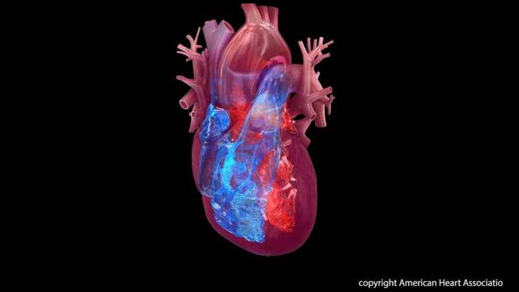 رابطۀ سندروم قلب شکسته با سرطان