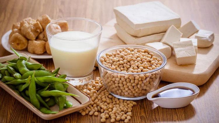 فیتواستروژن چیست؟
