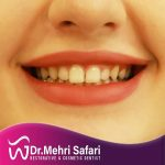 drmehrisafari_121381060_3416547345237978_5058619057416870705_n