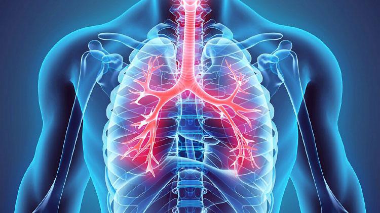 زمان بهتری برای در نظر گرفتن ریههای ما نیست