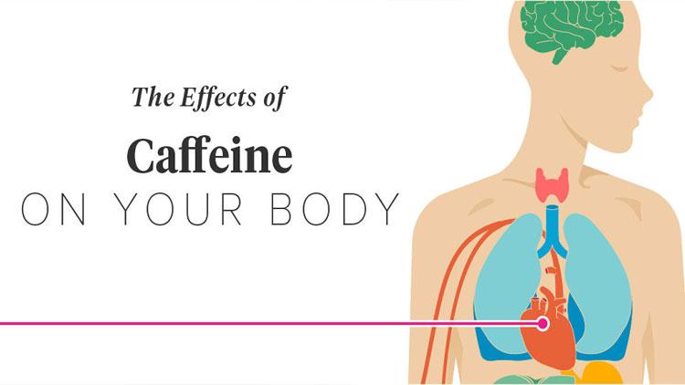 کافئین چه تاثیری بر بدن شما دارد
